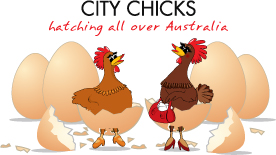 franchise opportunities hatching at City Chicks